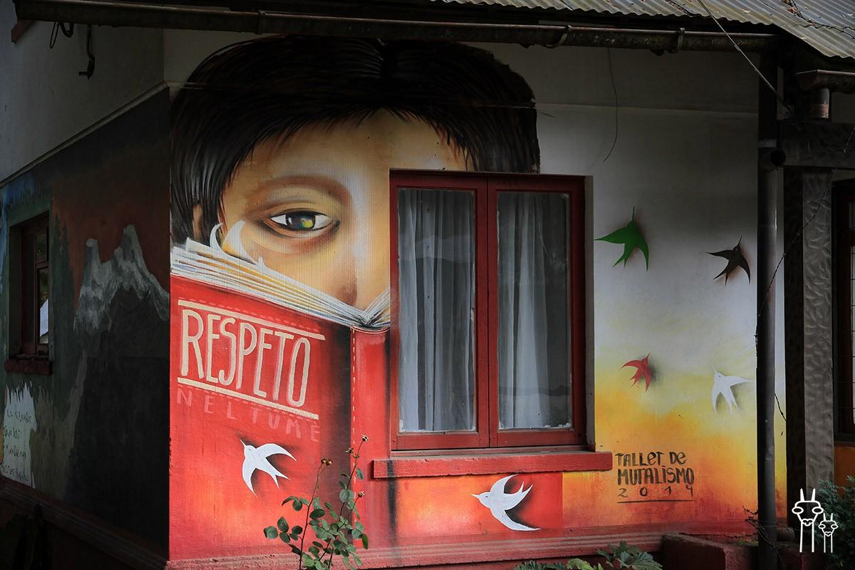 Neltume_Chile_museo_04